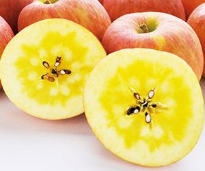 鈴木さんグループの高徳りんご2キログラム(イオンショップ)