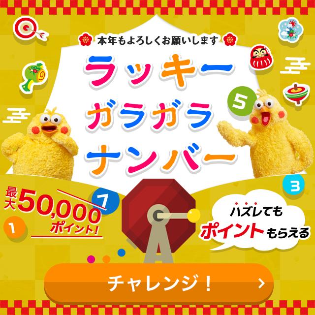 ラッキーガラガラナンバー(最大50,000ポイント)