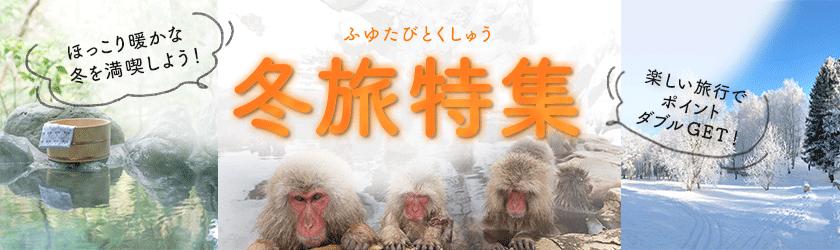 年末年始の予約も!冬の旅行特集!