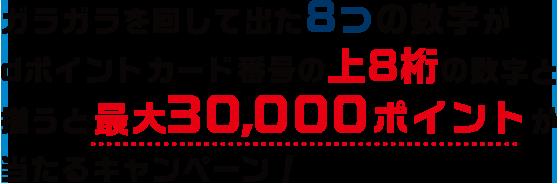 ガラガラを回して出た8つの数字がdポイントカード番号の上8桁の数字と揃うと最大30,000ポイントが当たるキャンペーン!