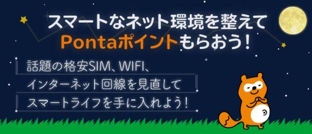 格安SIM、格安スマホ、インターネットでポイントがたまる