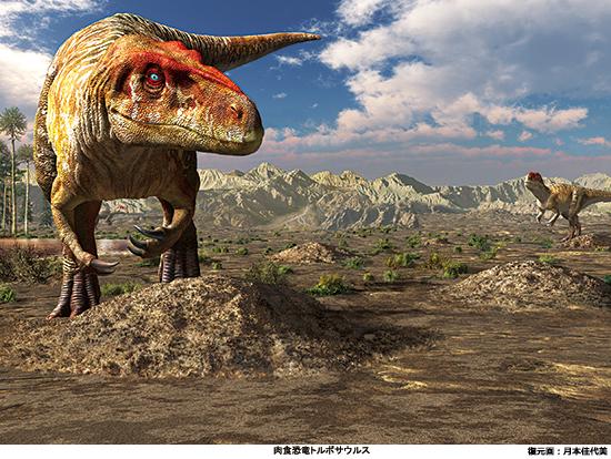 御船町恐竜博物館特別展「肉食恐竜~ミフネリュウ発見から40年~」(熊本)に50組100人を招待