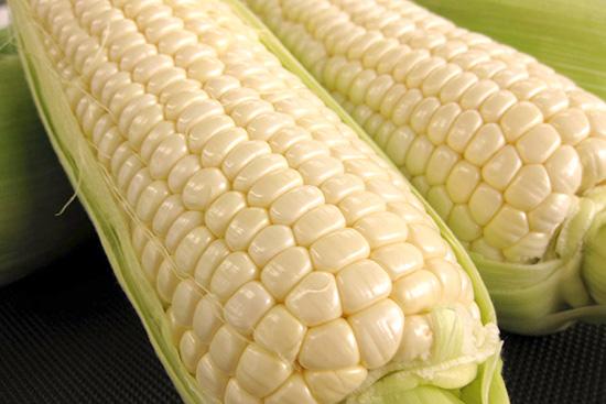 【毎週日曜日はマルシェの日】全農長野 僕らはおいしい応援団「ホワイトコーン」(約5キロ)を5人に