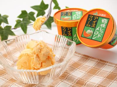 【夏だ!!ご当地アイス祭り】「鶴姫レッドメロンアイスクリーム(8個入り)」を10人に