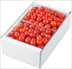 cherry250.jpg