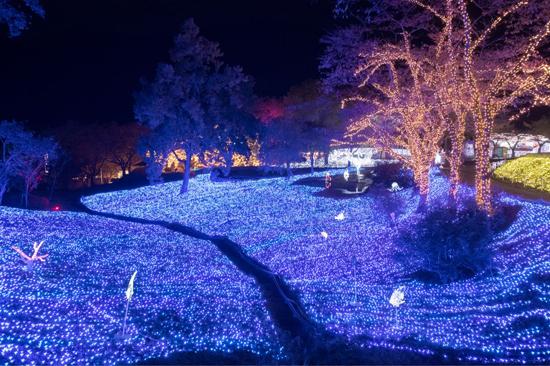 プレジャーフォレスト(神奈川)の「さがみ湖イルミリオン」に5組10人を招待